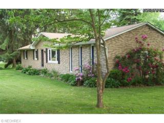 10070  Ruth Dr  , Wadsworth, OH 44281 (MLS #3688671) :: Platinum Real Estate