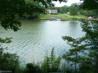 1430  Lake Vue Dr  , Roaming Shores, OH 44085 (MLS #3688682) :: RE/MAX Edge Realty