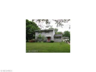 866  Danmead Ave  , Akron, OH 44305 (MLS #3694360) :: Howard Hanna