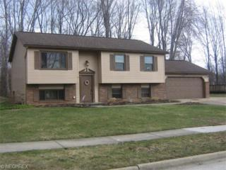 4523  Pine Ridge Dr  , Stow, OH 44224 (MLS #3694806) :: RE/MAX Edge Realty