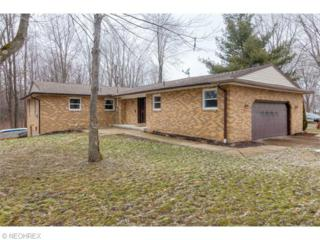 1584  Pierpont Dr  , Roaming Shores, OH 44084 (MLS #3695035) :: RE/MAX Edge Realty