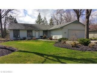 10008  Crows Nest Cove  , Reminderville, OH 44202 (MLS #3699950) :: Platinum Real Estate