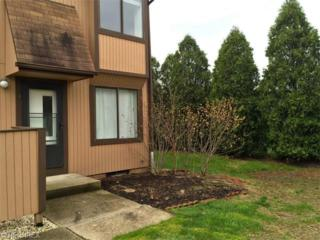 35293 S Turtle Trl  , Willoughby, OH 44094 (MLS #3701476) :: Howard Hanna