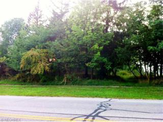 7866  State Rd  , Parma, OH 44134 (MLS #3701641) :: RE/MAX Edge Realty