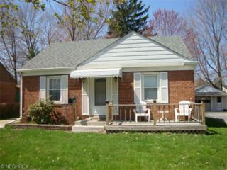 376  Lucille Ave  , Painesville, OH 44077 (MLS #3703671) :: Howard Hanna