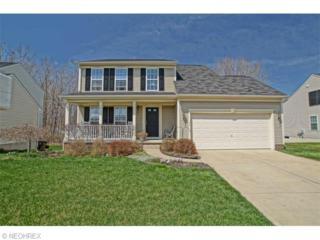 152  Cedarbrook Dr  , Painesville, OH 44077 (MLS #3703684) :: Howard Hanna