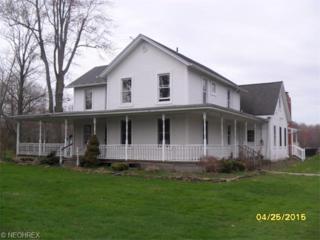 7008  Brakeman Rd  , Painesville, OH 44077 (MLS #3703870) :: Platinum Real Estate