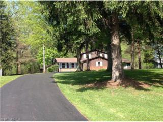 13346  Caves Rd  , Chesterland, OH 44026 (MLS #3713231) :: RE/MAX Edge Realty