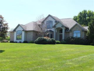 4341  Carmont Ave SW , Navarre, OH 44662 (MLS #3713585) :: RE/MAX Crossroads Properties