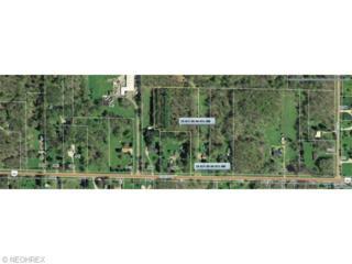 State Route 82  , Hiram, OH 44234 (MLS #3714141) :: Platinum Real Estate