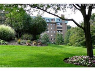 5150  Three Village  1E, Lyndhurst, OH 44124 (MLS #3399268) :: Howard Hanna