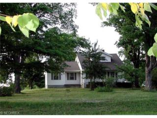 12112  Butternut Rd  , Newbury, OH 44065 (MLS #3642241) :: Howard Hanna