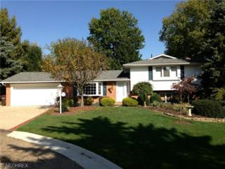6205  Ronald St NW , Canton, OH 44718 (MLS #3658486) :: Platinum Real Estate