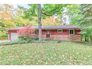 8803  Grace Ct  , Mentor, OH 44060 (MLS #3659221) :: Platinum Real Estate