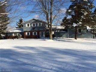 11850  Butternut Rd  , Newbury, OH 44065 (MLS #3668399) :: Howard Hanna