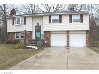 9900  Pebble Beach Cove  , Reminderville, OH 44202 (MLS #3685545) :: Platinum Real Estate