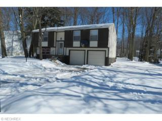 3686  Sea Ray Cv  , Reminderville, OH 44202 (MLS #3686441) :: Platinum Real Estate