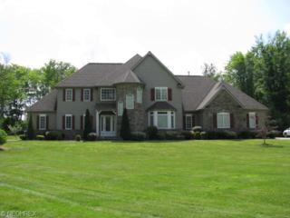 16065  Addington Ct  , Newbury, OH 44065 (MLS #3609267) :: Howard Hanna