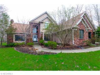 8385  Ashford St  , Concord, OH 44077 (MLS #3702700) :: Platinum Real Estate