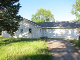208 N Madison Avenue  , Battle Lake, MN 56515 (#4496193) :: Team Lucky Duck