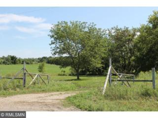 20  +/- Acres 770th Avenue  , Martell Twp, WI 54022 (#4520998) :: Keller Williams Premier Realty