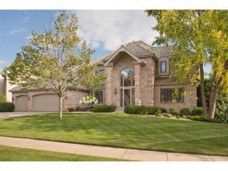 7671  Bush Lake Drive  , Bloomington, MN 55438 (#4521987) :: The Preferred Home Team