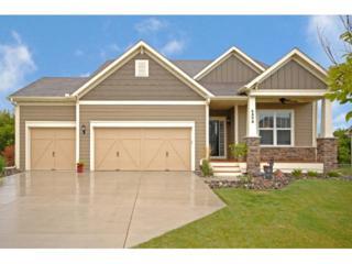 6806 W 113th Street  , Bloomington, MN 55438 (#4522545) :: The Preferred Home Team