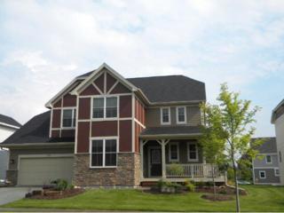 11178  Stillwater Lane  , Woodbury, MN 55129 (#4522563) :: The Preferred Home Team