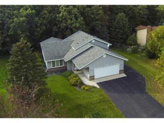 18601  Jasper Way  , Lakeville, MN 55044 (#4532823) :: Team Lucky Duck