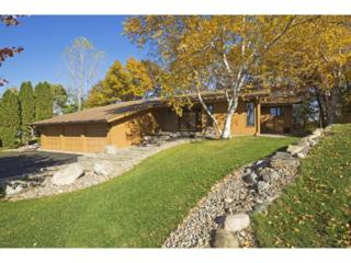 8721  Wood Cliff Circle S , Bloomington, MN 55438 (#4537996) :: The Preferred Home Team