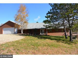7060  Chester Avenue  , Webster Twp, MN 55057 (#4538840) :: Homes Plus Realty