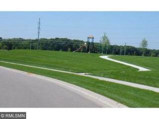 9580  Madison Drive  1, Chanhassen, MN 55317 (#4538863) :: Homes Plus Realty