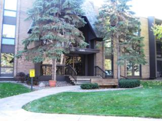 6105  Lincoln Drive  341, Edina, MN 55436 (#4538988) :: Nerdy Agent Team