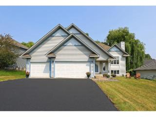 4600  Minnesota Lane N , Plymouth, MN 55446 (#4541095) :: FindLKMTKAHomes.com Team