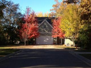 2020  Klickitat Street  , Big Lake, MN 55309 (#4541305) :: The Preferred Home Team
