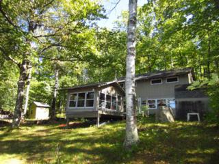 14414  Twin Lake Rd Road  , Goodland, MN 55742 (#4541349) :: Team Lucky Duck
