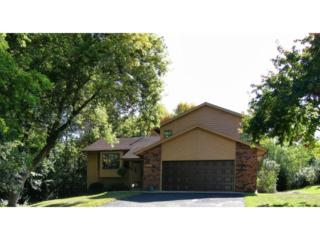 1701  Oakways Street  , Minnetonka, MN 55391 (#4544659) :: The Preferred Home Team