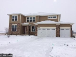 9293  Compass Pointe Road  , Woodbury, MN 55129 (#4545053) :: The Preferred Home Team