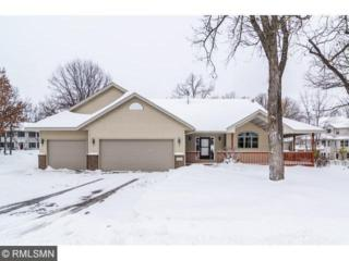 13860  Parkview Drive  , Becker, MN 55308 (#4545877) :: The Pomerleau Team