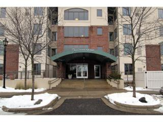 5225  Grandview Square  410, Edina, MN 55436 (#4546123) :: The Pomerleau Team