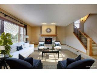 1244  Whistler Point Road  , Woodbury, MN 55129 (#4546262) :: The Preferred Home Team