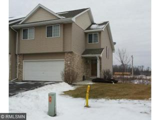 10177  180th Lane NW , Elk River, MN 55330 (#4546768) :: The Preferred Home Team