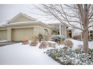 1359  Waterford Drive  , Golden Valley, MN 55422 (#4546894) :: Homes Plus Realty