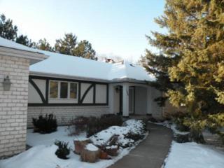 1338  Belmont Drive  , Woodbury, MN 55125 (#4548386) :: The Preferred Home Team
