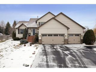 2835  Carver Park Circle  , Woodbury, MN 55125 (#4548816) :: The Preferred Home Team