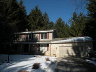 1409  Tamberwood Trail  , Woodbury, MN 55125 (#4549149) :: The Preferred Home Team