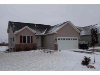 7505  Large Avenue NE , Otsego, MN 55301 (#4549789) :: The Preferred Home Team