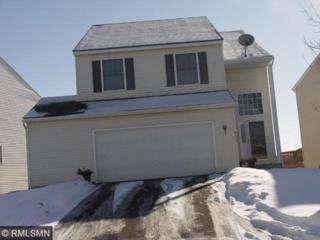 8503  Savanna Oaks Lane  , Woodbury, MN 55125 (#4556291) :: The Preferred Home Team