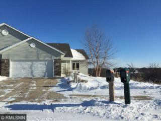 2837  Pine Ridge Boulevard  , Red Wing, MN 55066 (#4556717) :: Homes Plus Realty
