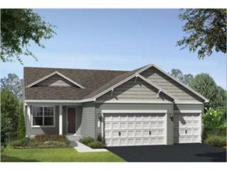 20991  Goodhue Way  , Lakeville, MN 55044 (#4557474) :: Team Lucky Duck